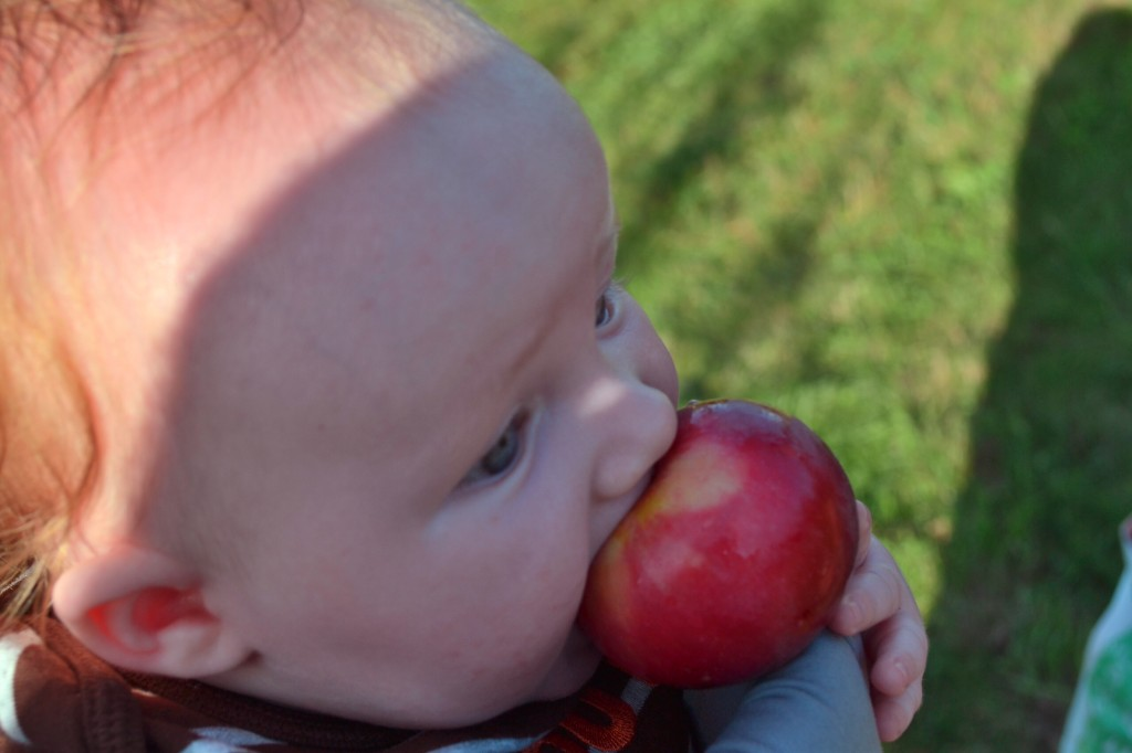 Silly baby and apple