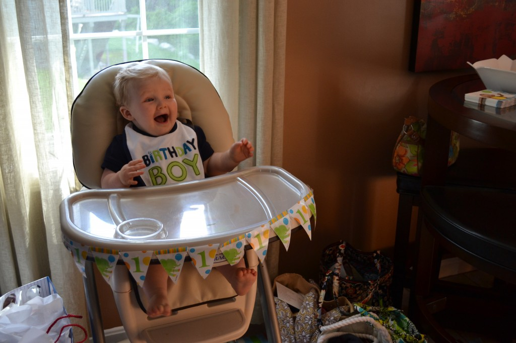 Baby Boy Excited for Cupcake at First Birthday
