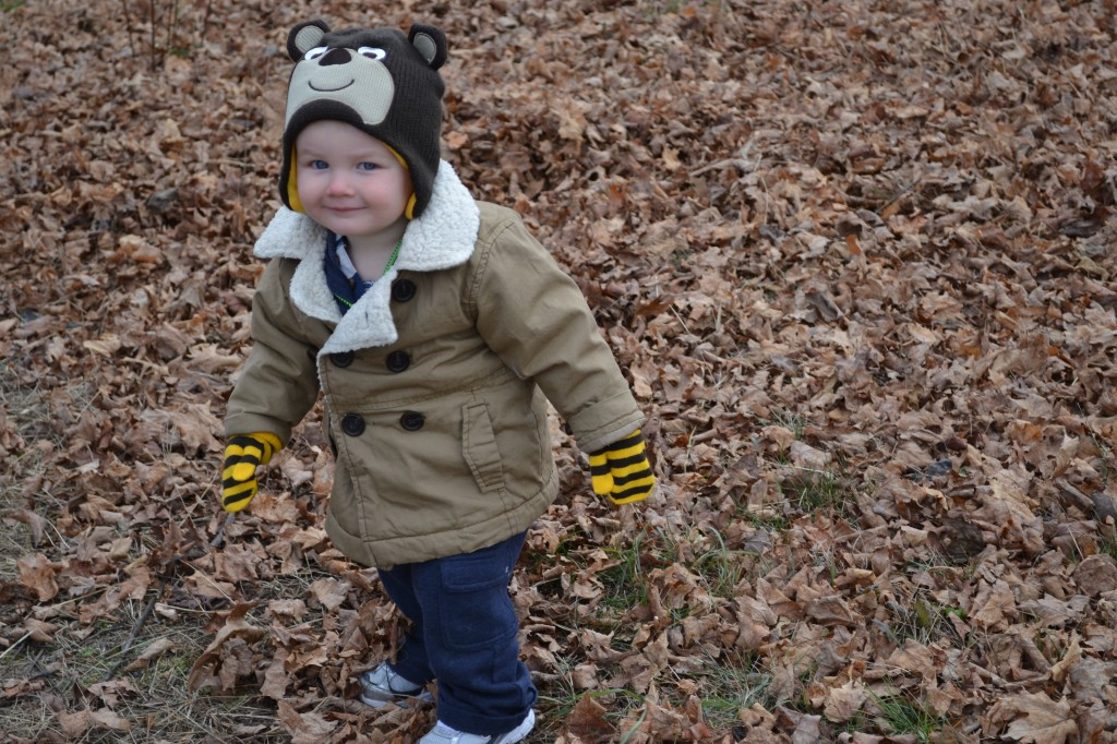 Sweet Toddler Boy in Winter Coat and Hat